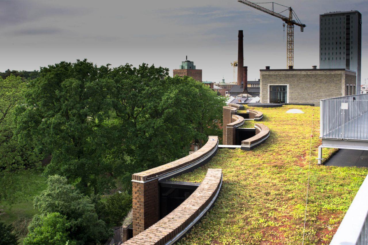 Fra tagterrasen på Carlsberg Campus ses udsigten både til grønne områder og bygningsarbejde