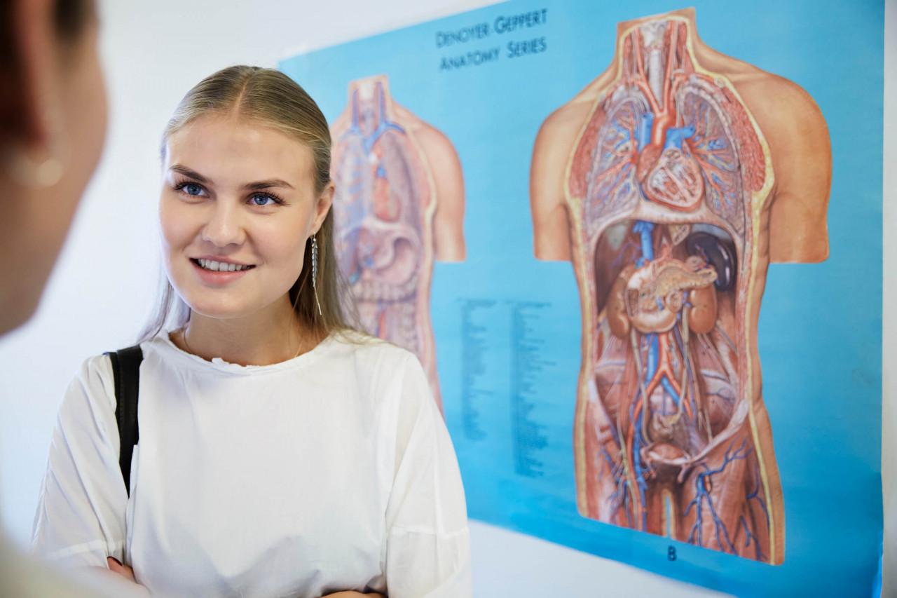 Sygeplejersketuderende foran planche, som viser kroppens anatomi.