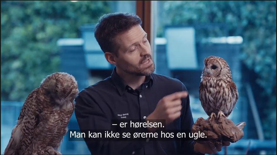 Zoolog Mikkel Stelvig står med to udstoppede ugler