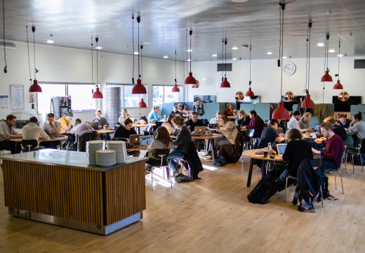 En masse lærerstuderende arbejder ved borde i kantinen